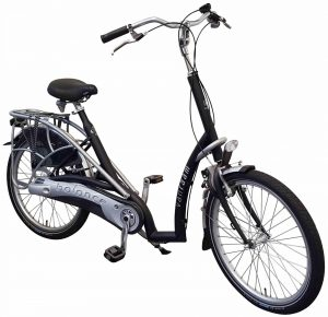 Van Raam Balance 2021 Dreirad für Erwachsene