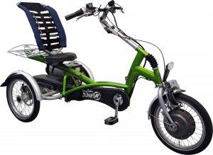 Van Raam Easy Rider Junior 2021 Dreirad für Erwachsene