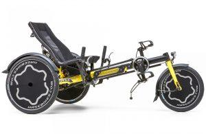 HASE BIKES TRIX 2021 Dreirad für Erwachsene