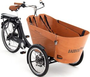 Babboe Flow-E 2021 Lasten e-Bike