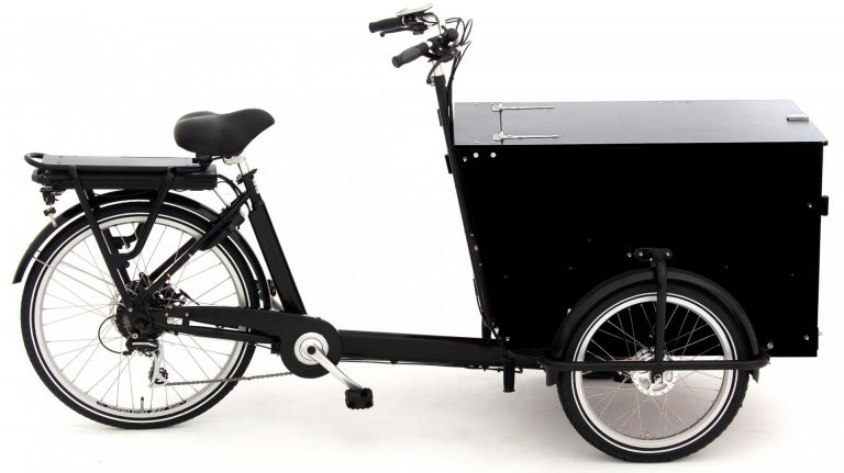 Babboe Pro Trike-E 2021