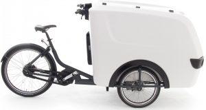 Babboe Pro Trike XL 2021 Lasten e-Bike