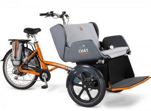 Van Raam Chat 2021 Dreirad für Erwachsene,Lasten e-Bike