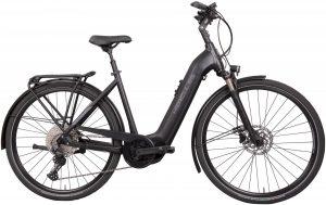 Hercules Futura Comp I-11 2022 Trekking e-Bike